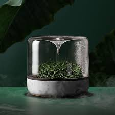 create a desk garden leisure indianagazette com