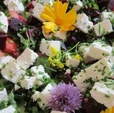 Salad With Edible Flowers - irish recipes and food from ireland