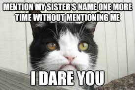 Grumpy Cat Meme Valentines Day - pissed off pokey mention my sisters name one more time without