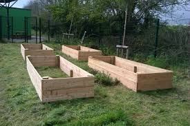 raised beds starting to grow your own vegetables ltg