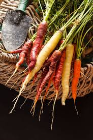 495 best growing your own vegetables images on pinterest kitchen