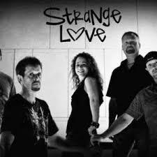 wedding bands cincinnati hire strangelove band wedding band in cincinnati ohio