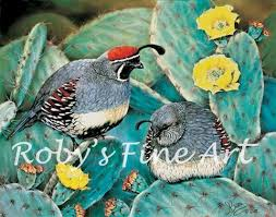 109 best cute sometimes chubby quails images on pinterest