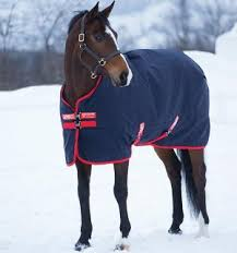 Rambo Lightweight Turnout Rug Horseware Ireland Making Life Easier For Horses And Riders