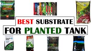 Best Substrate For Aquascaping Aquarium Plant Fertilizer Best Substrate For Planted Tank 2018