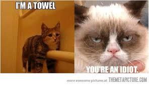 Funny Grumpy Cat Meme - image funny grumpy cat towel meme jpg unturned bunker wiki