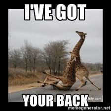 I Ve Got Your Back Meme - i ve got your back trust fall giraffes meme generator
