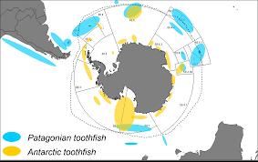 Southern Ocean Map Antarctic Toothfish Fishery In The Ross Sea Niwa