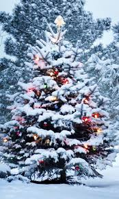 live christmas tree wallpaper android apps on google play