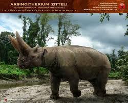 286 ancient animals images extinct animals