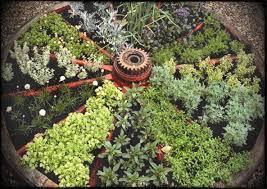 Container Vegetable Gardening Ideas Diy Container Vegetable Garden This Pug Img Home Garden