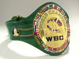 Light Heavyweight Champion World Heavyweight Boxing Champions