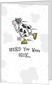 cow greeting cards buy get well cow sick ill recover humor greeting card