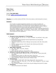Resume Sample Templates Doc by Visual Basic Developer Resume Resume For Web Developer Web Ux