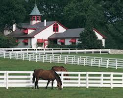 149 best kentucky horse farms images on pinterest horse farms