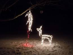 lighted deer decoration 71kecht4cgl sl1500