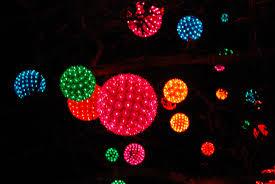 light balls for trees rainforest islands ferry