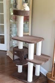 Outdoor Cat Condo Plans by Best 25 Outdoor Cat Tree Ideas On Pinterest Outdoor Cat