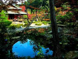 lawn u0026 garden modern calming japanese garden in bakyard with