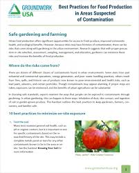 Benefits Of Urban Gardening - best practices for food production in areas suspected of