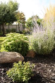 Landscaping by Best 25 Bungalow Landscaping Ideas On Pinterest Craftsman Live