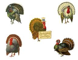 diy vintage thanksgiving decor placecards from pet scribbles
