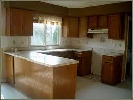 refinish old kitchen cabinets refurbished metaln cabinets hbe bold idea restored refurbished