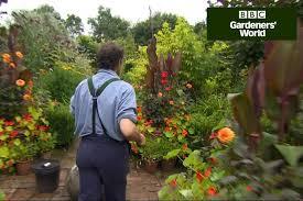 Fragrant Climbing Plants - how to grow scented climbers gardenersworld com