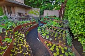 Kitchen Garden Designs Creative Idea Backyard Garden Design With Fresh Green Vegetable