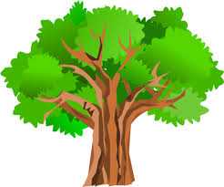 thick tree cliparts free clip free clip on