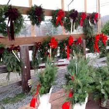 fidler u0027s tree farm christmas trees 1263 long run rd