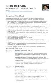 Professional Development Resume Business Development Director Resume Samples Visualcv Resume