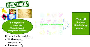 biodegradable electronics cornerstone for sustainable electronics