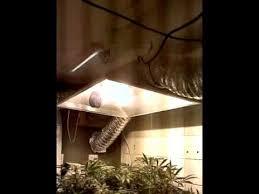 Grow Room Lights Hydroponics Grow Room Light Setup With Extra Large Hoods Youtube