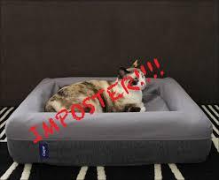 black friday deals on mattresses bedroom casper mattress opening eve matress casper mattress