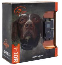 Radio Collar For Beagle Top Obedience Training And E Collar Reviews For Your Gun Dog
