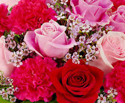 excite and delight your loved ones with mesmerising flowers