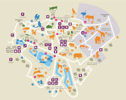 Map Note Paignton Zoo Interactive Map