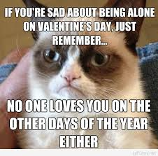 Single People Meme - funny valentine s day message for single ones