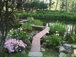 narrow japanese zig zag bridge with iris and calla lillies dream