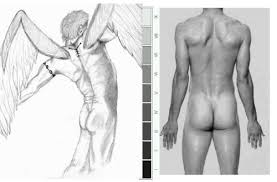 first male figure drawing archive wetcanvas
