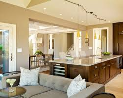 interior paints for homes outstanding paints for house interior photos 14 home paint color