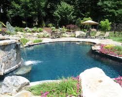 Backyard With Pool Ideas Medium Size Pool Ideas U0026 Photos Houzz
