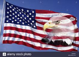 Bald Eagle And American Flag This An American Flag Waving In Wind Against Blue Sky An American