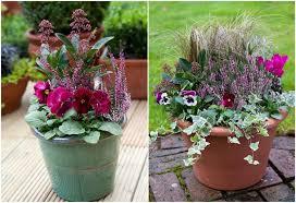 herbstbepflanzung balkon beliebte herbstblumen für balkon 11 balkonbepflanzung ideen