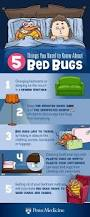 Medicine For Bed Bugs 5 Things You Need To Know About Bed Bugs Bed Bug Pinterest