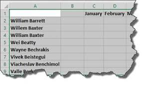 biography exle yourself excel 2016 using cells rows and columns universalclass