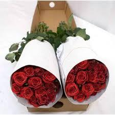 roses wholesale 1 000 roses wholesale bulk jr roses wholesale flowers