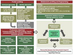 frontiers proteomics and metabolomics two emerging areas for