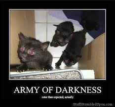 Evil Cat Meme - image army of darkness cuter than expected actually meme evil cat